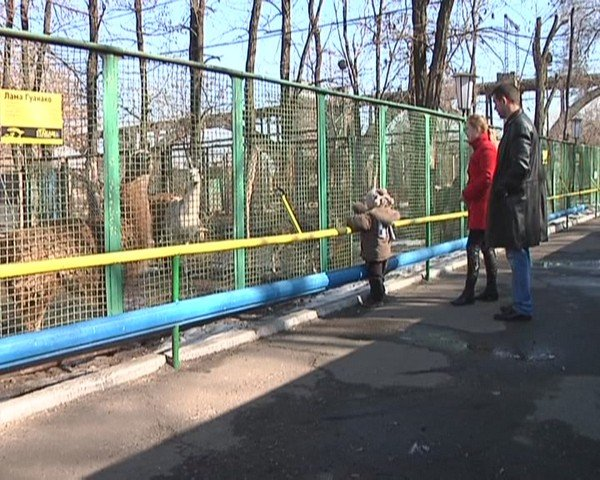1331676030_kukoba_zoopark00134820-59-24-rrryiresrrrss