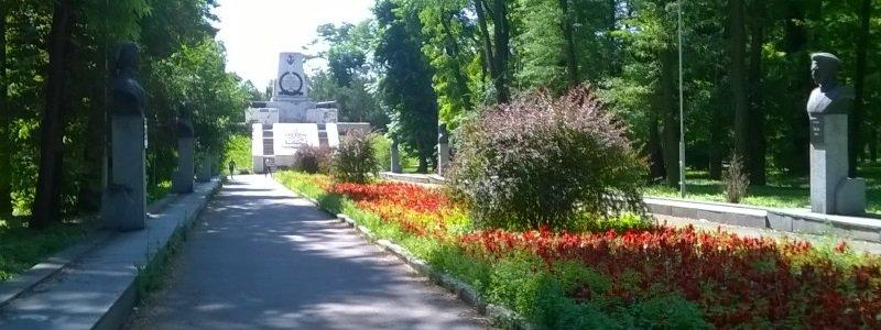 Севастопольский парк вырубка деревьев
