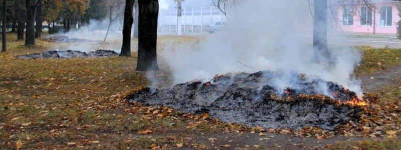 в днепропетровске сжигают листья - новости днепра