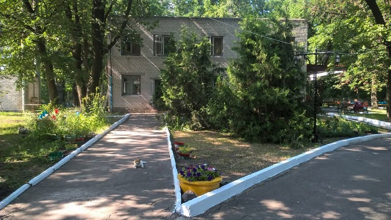 санаторий Пролисок