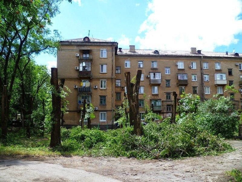 zeleny-e-nasazhdeniya