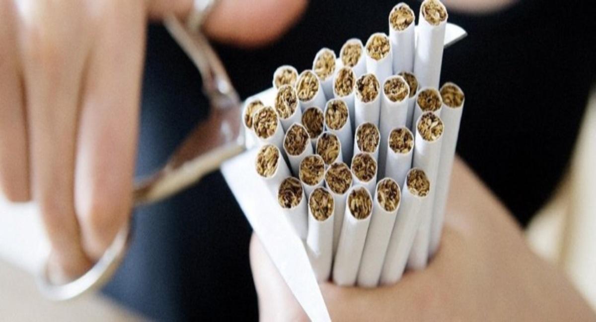 Новые табачные изделия что это организация обслуживания табачных изделий